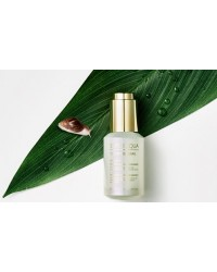 Cell Renew Snail Ampoule 30ml